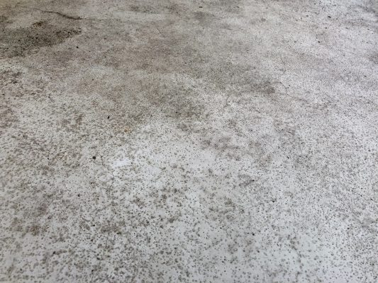 清掃後のベランダ